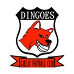 dingoes-gfc